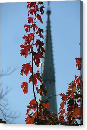 Towering Leaves Canvas Print by Alfred Ng