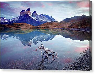 Towers Of The Andes Canvas Print by Phyllis Peterson