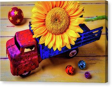 Toy Truck And Sunflower Canvas Print