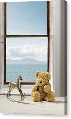 Toys Overlooking The Ocean Canvas Print