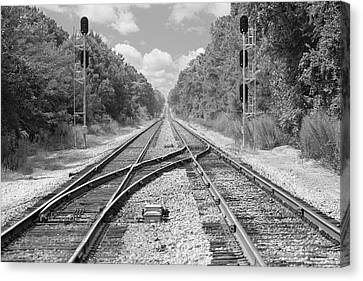 Canvas Print featuring the photograph Tracks 2 by Mike McGlothlen