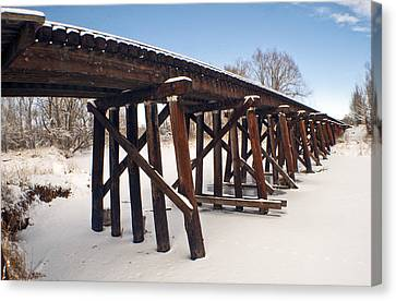 Tracks After The Snow Storm Canvas Print by James Steele