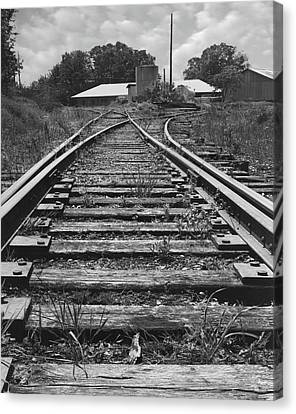 Canvas Print featuring the photograph Tracks by Mike McGlothlen