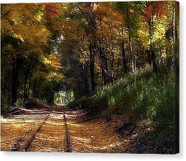 Tracks To Autumn Canvas Print