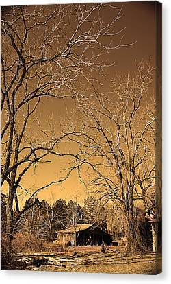 Tractor Shed II Canvas Print by Patricia Motley