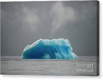 Iceberg - Tracy Arm Fjord Canvas Print