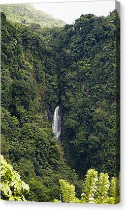 Trafalgar Falls From A Distance Canvas Print by Todd Gipstein