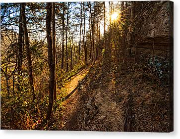 Trail Of Happiness - Blowing Springs Trail Arkansas Canvas Print