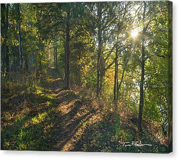 Trail Canvas Print