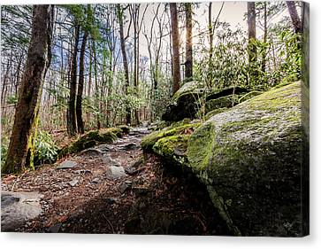 Trail To Rainbow Falls Canvas Print by Everet Regal
