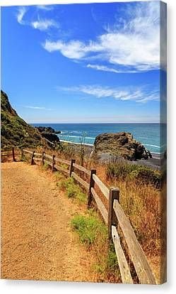Canvas Print featuring the photograph Trail To The Lost Coast by James Eddy