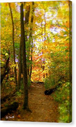 Indiana Landscapes Canvas Print - Trailhead Light by Ed Smith