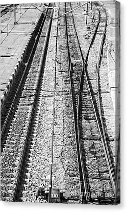 Train Tracks Canvas Print by Gabriela Insuratelu