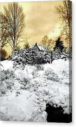 Tramonto Invernale Canvas Print by Diana Angstadt