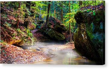 Canvas Print featuring the photograph Tranquil Mist by David Morefield