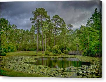Tranquil Pond Canvas Print by Judy Hall-Folde