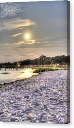 Tranquil Southern Night Canvas Print by Dustin K Ryan
