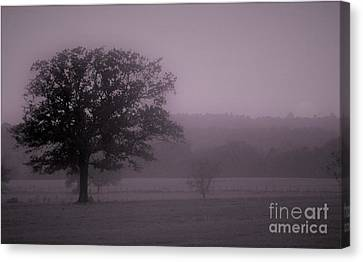 Tranquil Texas Morning Canvas Print
