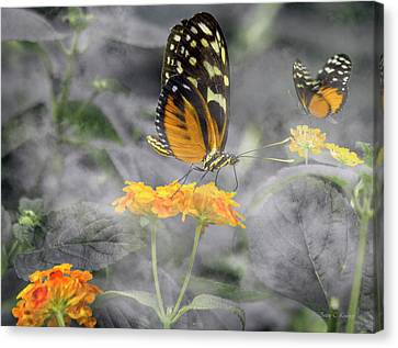 Tranquility Garden Canvas Print by Betsy Knapp