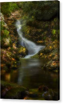 Canvas Print featuring the photograph Tranquility by Ellen Heaverlo