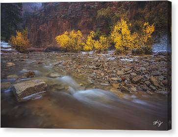 Canvas Print - Transcendence by Peter Coskun