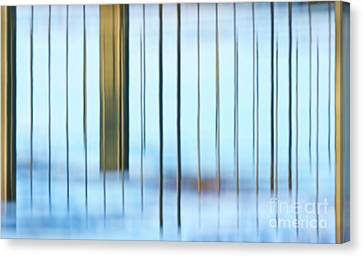 Canvas Print featuring the photograph Transcendental... by Nina Stavlund