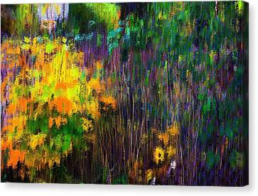 Transition 2 Canvas Print by Terence Morrissey