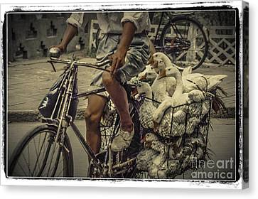 Transport By Bicycle In China Canvas Print by Heiko Koehrer-Wagner