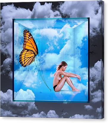 Trapped Butterfly Canvas Print