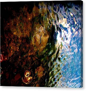 Trashed Canvas Print