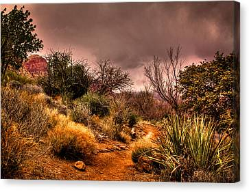 Traveling The Trail At Red Rocks Canyon Canvas Print by David Patterson
