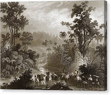 Travels In Brazil Canvas Print by English School