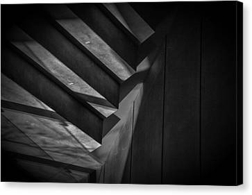 Canvas Print featuring the photograph Tread Lightly by Tim Nichols