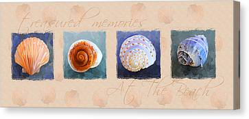 Treasured Memories Sea Shell Collection Canvas Print by Jai Johnson
