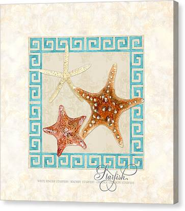 Knobby Canvas Print - Treasures From The Sea - Starfish Trio by Audrey Jeanne Roberts