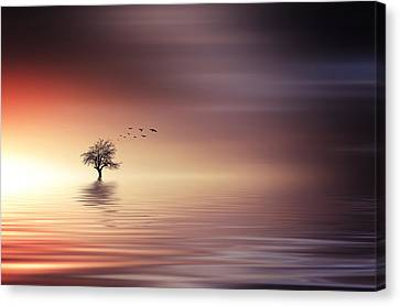 Tree And Birds On Lake Sunset Canvas Print by Bess Hamiti