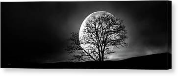Canvas Print featuring the photograph Tree And Moon by Bob Orsillo
