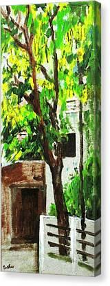 Tree And Shade Canvas Print by Usha Shantharam