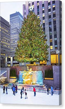 Tree And Skaters 2015 Canvas Print by Andrew Kazmierski