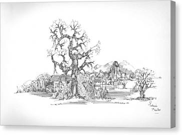 Canvas Print featuring the drawing Tree And Some Rocks by Padamvir Singh