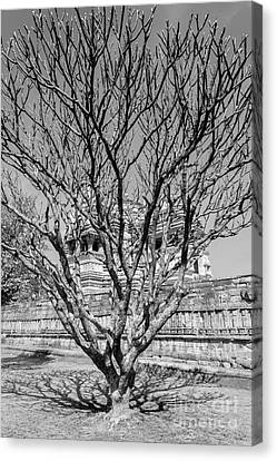 Tree And Temple Canvas Print