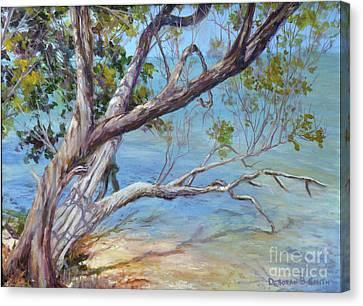 Tree At Islamorada Key Canvas Print