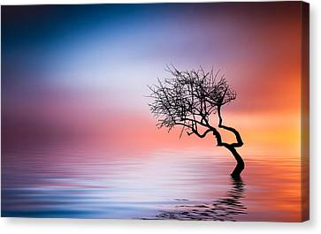 Tree At Lake Canvas Print by Bess Hamiti