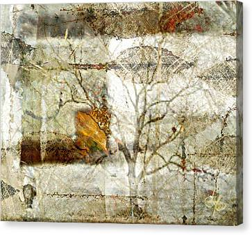 Tree Deconstructed 1 Canvas Print by Lynda Payton