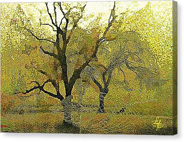 Tree Deconstructed 4 Canvas Print by Lynda Payton