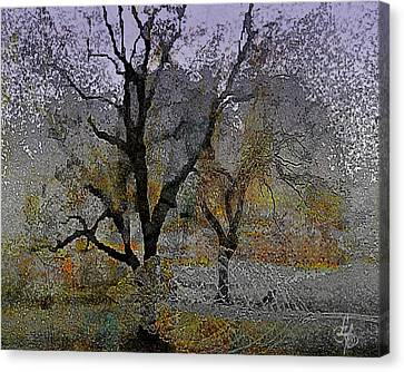 Tree Deconstructed 6 Canvas Print by Lynda Payton