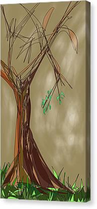 Tree Canvas Print by Denny Casto