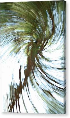Tree Diptych 1 Canvas Print