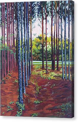 Tree Farm Canvas Print by David Randall