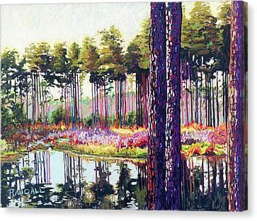 Tree Farm II Canvas Print by David Randall